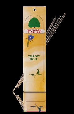 Natural Yellow Rose 12er Pack