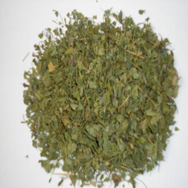 Bockshornklee-Blätter ganz